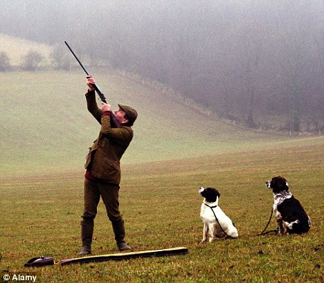 Preserve of the rich: Professor Ron Glatter said the public would be surprised by the activities on offer at schools claiming to be charities, which include pheasant-shooting (posed by model)