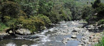 Llamados preventivos del CMGRD evitaron hechos que lamentar en río Pance