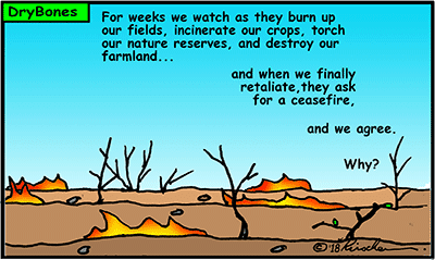Dry Bones cartoon, Gaza, Palestinian Arabs, Hamas,firebombs, kites, ceasefire,