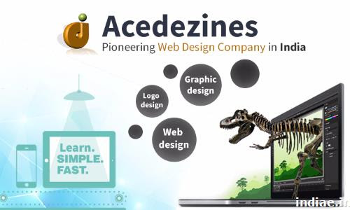 Acedezines- Pioneering Web Designing Company in India in Hyderabad | US$ 15