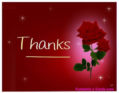 Thank you picture cards, wedding thank you cards