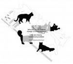 Cat Collection Silhouettes Woodworking Patterns - fee plans from WoodworkersWorkshop® Online Store - cats,felines,pets,animals,yard art,painting wood crafts,scrollsawing patterns,drawings,plywood,plywoodworking plans,woodworkers projects,workshop blueprints