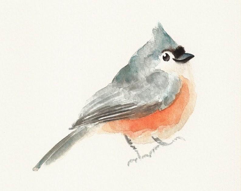Department of design cute watercolors for 3 little birds salon