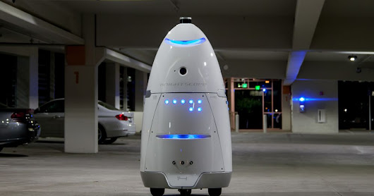 Animal shelter faces backlash after using robot to scare off homeless people
