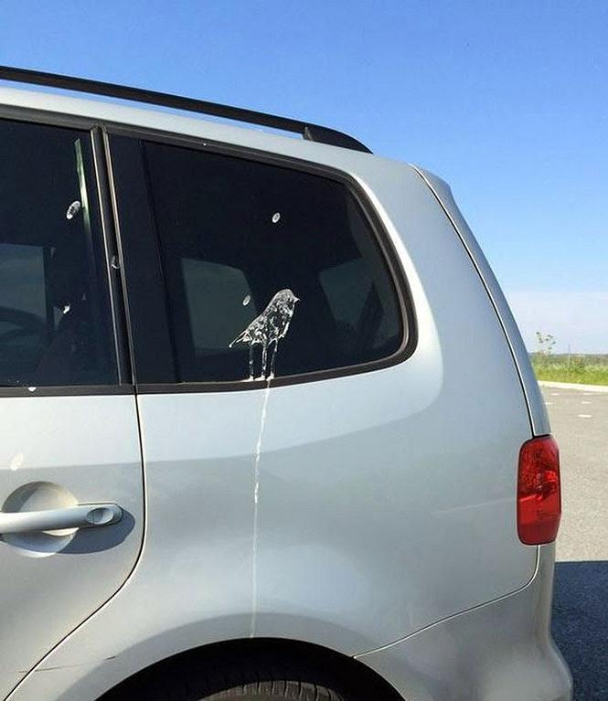 Πουλί άφησε πίσω του ένα έργο τέχνης... | Φωτογραφία της ημέρας