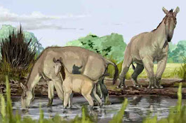 Mystery of how first animals appeared on Earth solved | Geology Page