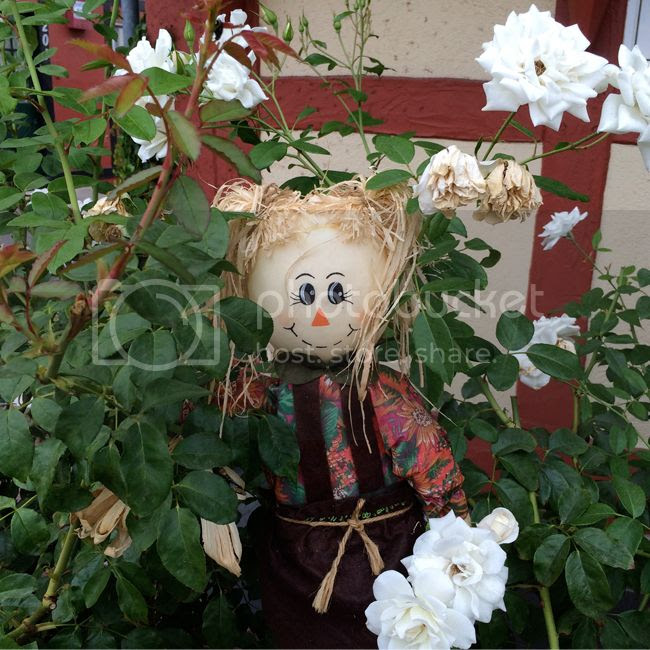 Solvang Scarecrow