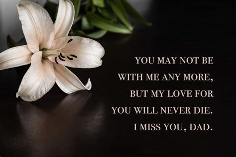 40  Miss You Dad Quotes, Poems, and Messages   Shutterfly