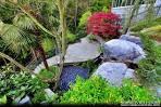 Exquisite Tropical Gardens