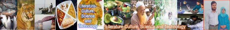 Literature-Culture + Health & Wealth + Religion, Science and Technology
