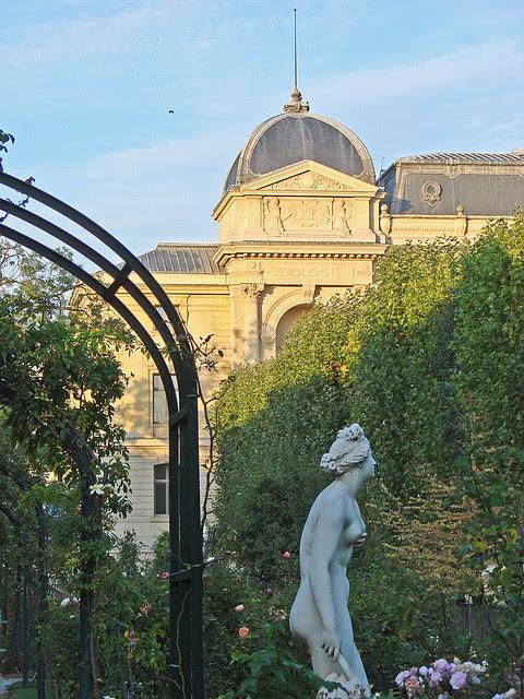 La roseraie du Jardin des Plantes (Paris)