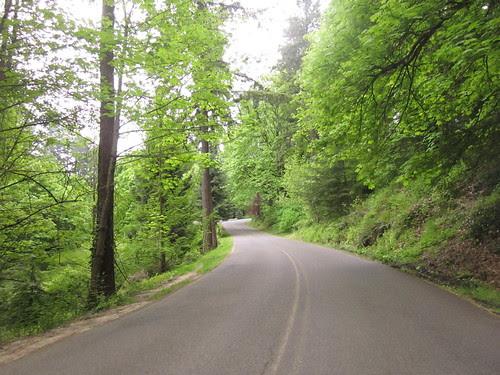 Heading home, climbing through Washington Park