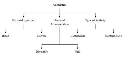 History of Antibiotics - The Discovery by Alexander Fleming