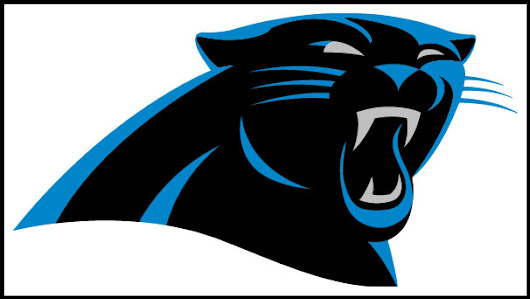 Carolina Panthers Event Security UVIS Case Study