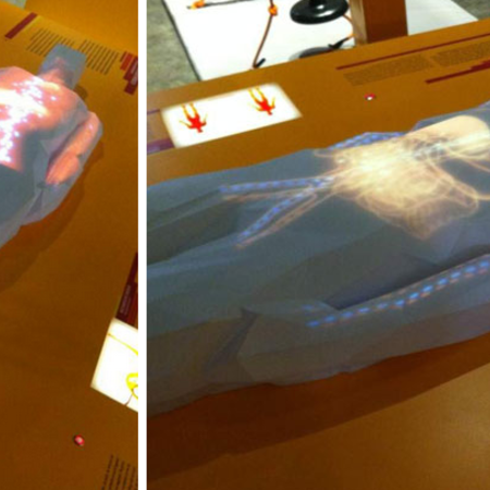 Transparent, Life-Size, 3D Printed Body Demonstrates How Humans Are Walking Generators | 3DP4E