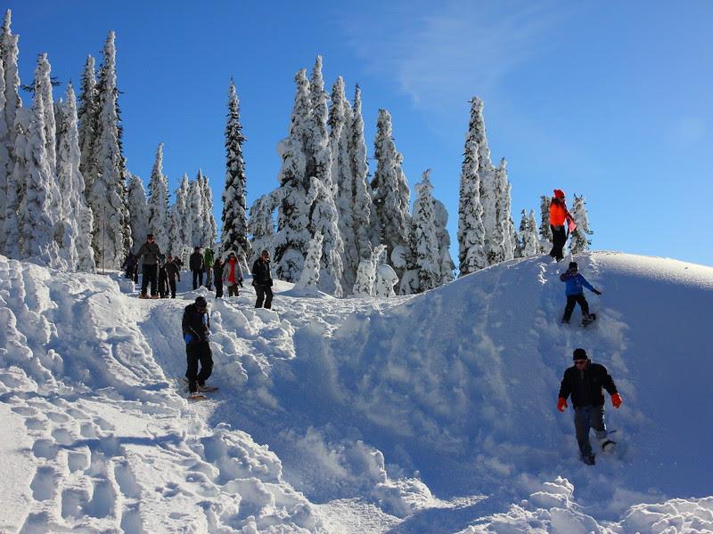 IMG_0245 Ranger-Led Snowshoe Walk