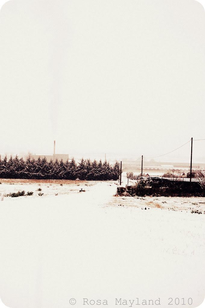 Snow Veyrier 4.1 bis