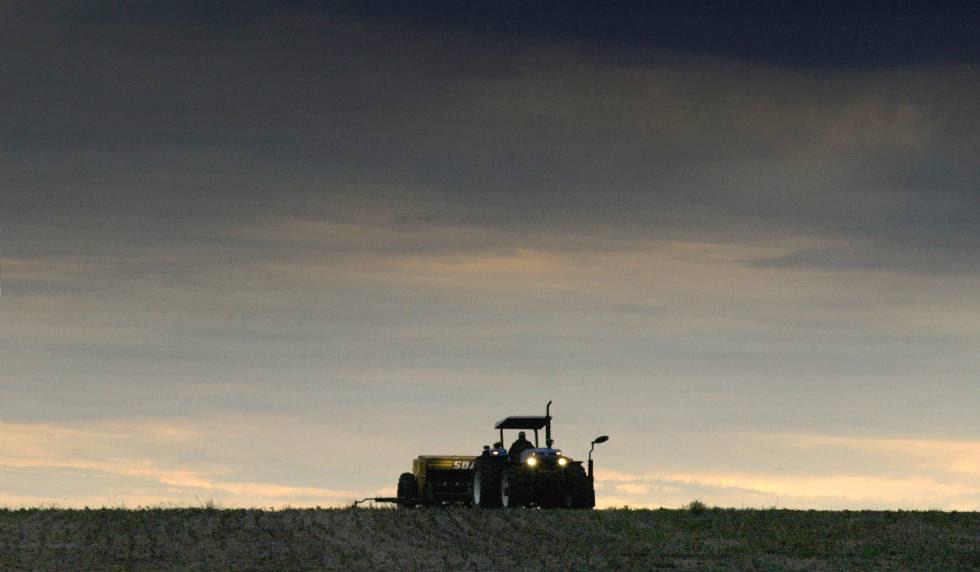 Imagen de un campo de soja en Uruguay.