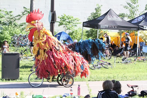 Rooster cycle