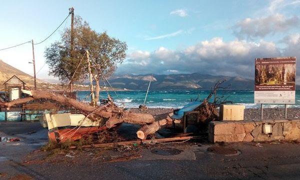 http://www.monemvasianews.gr/wp-content/uploads/2016/12/30.12.2016_Καταστροφές-στη-Μονεμβασία-λόγω-των-χθεσινών-ισχυρών-ανέμων_2.jpg
