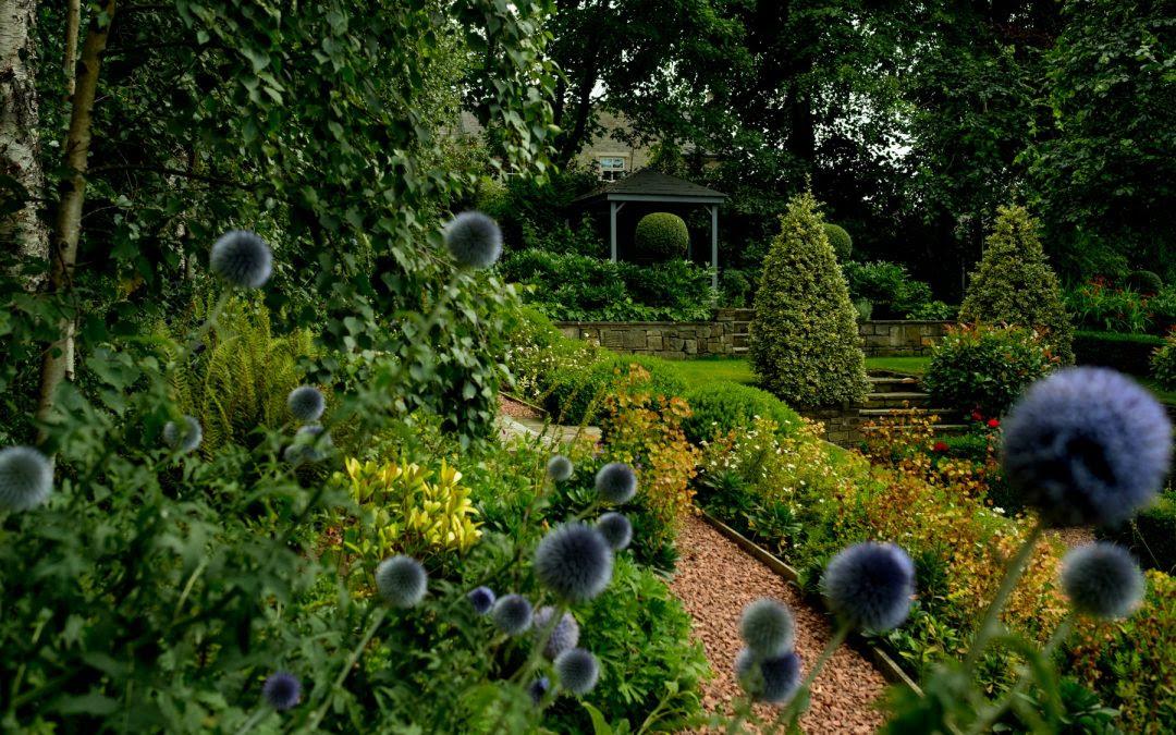 jcgardendesign: Garden Design Courses Yorkshire