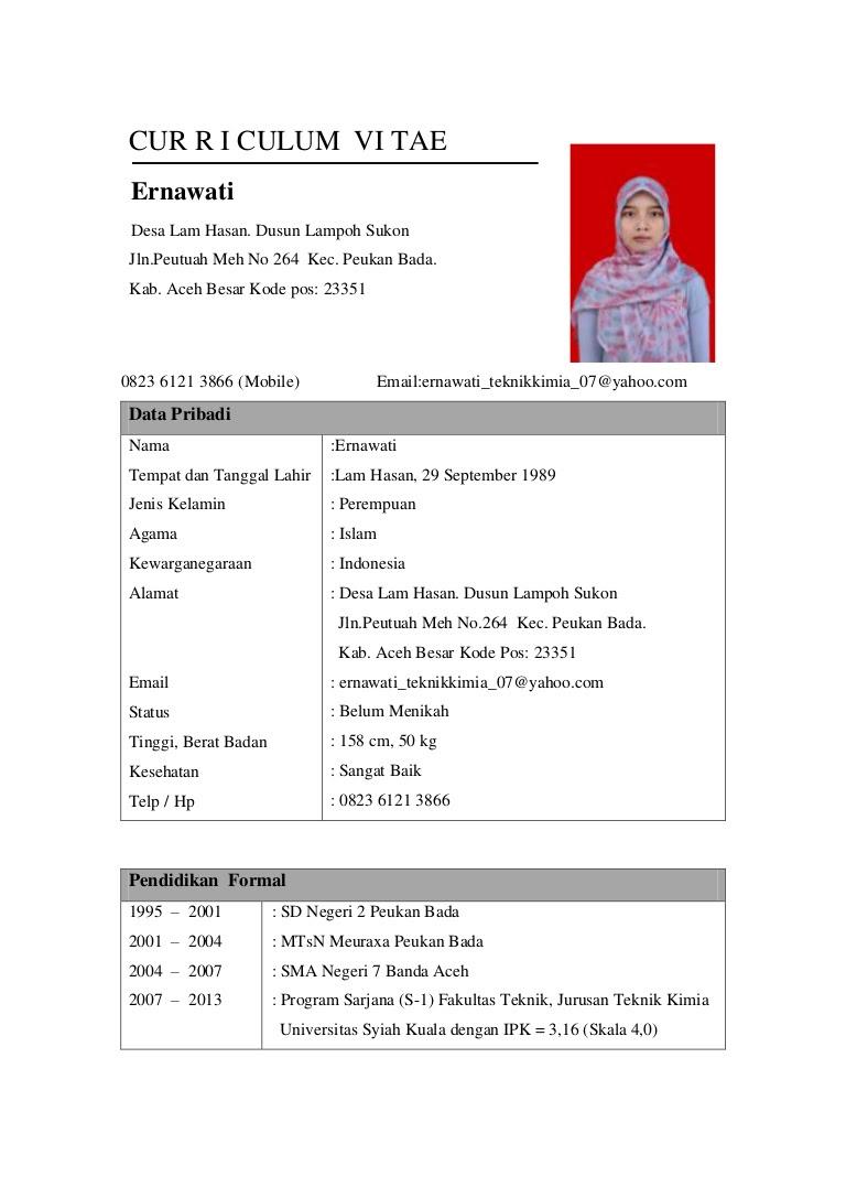 Contoh Cv Bahasa Inggris Format Pdf Professional Resume Career