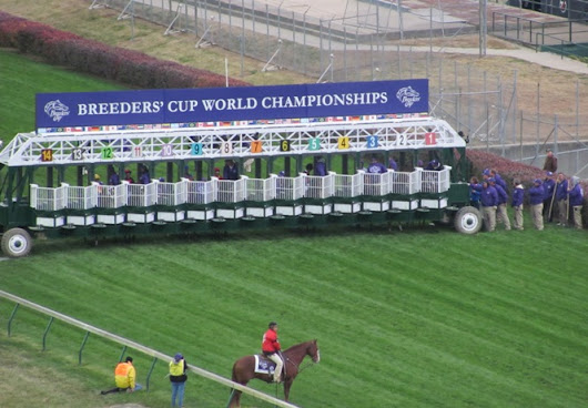 Lessons from the 2011 Breeders' Cup at Churchill Downs - A Game of Skill