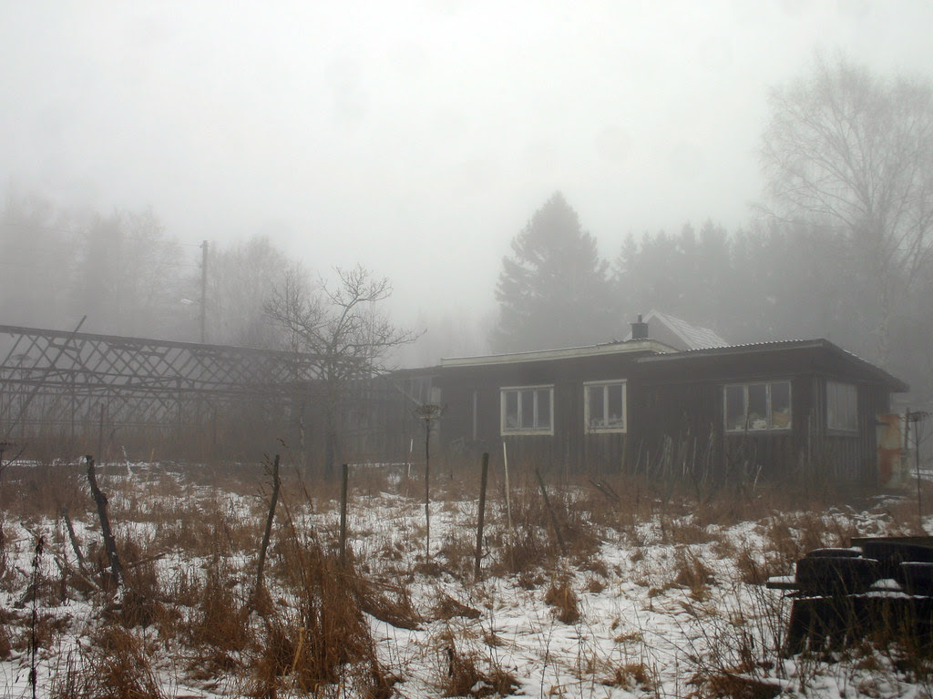 Abandoned Plant Nursery
