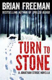 Turn To Stone by Brian Freeman