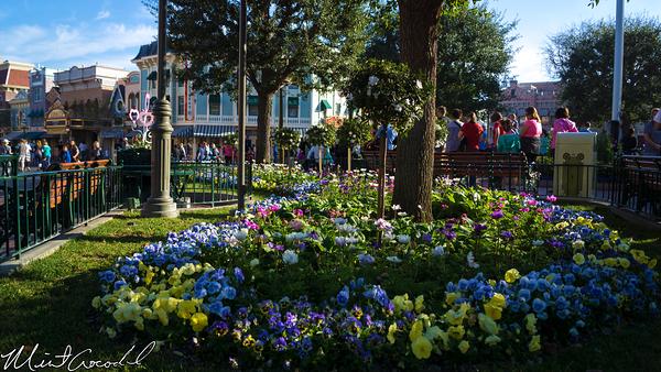 Disneyland Resort, Disneyland, Main Street U.S.A., Valentine, Day, Decor, Decorations, Heart, Flower