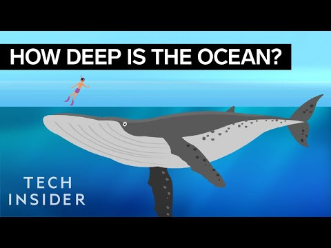 Science Video: How deep is the ocean?