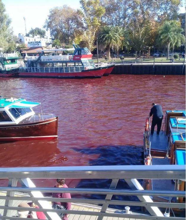 ποταμός μετατρέπει το αίμα κόκκινο τίγρης μπουένος αϊρες αργεντίνα, τίγρης rio rojo, τίγρης ποταμός αργεντίνα κόκκινο νερό, κόκκινο νερό τίγρης αργεντίνα