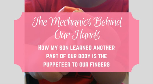 The Mechanics Behind Our Hands - From Engineer to Stay at Home Mom