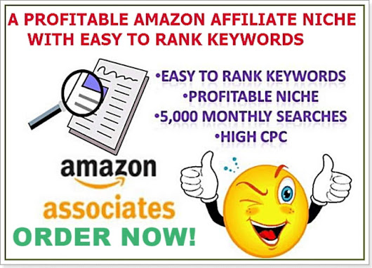 busplan101 : I will research high profitable amazon, clickbank products for $10 on www.fiverr.com