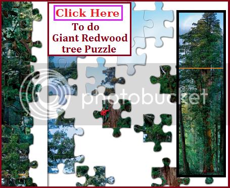 widget to puzzle