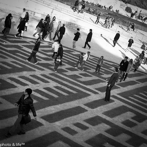 22101125 by Jean-Fabien - photo & life™