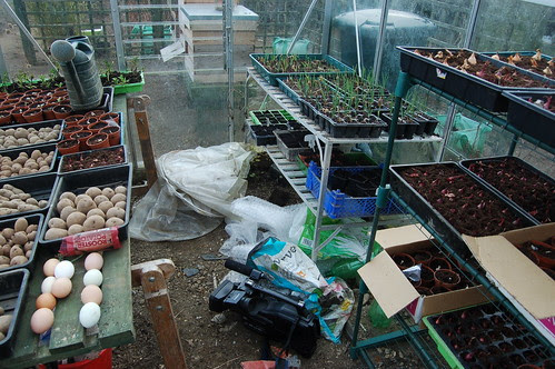 greenhouse Apr 13
