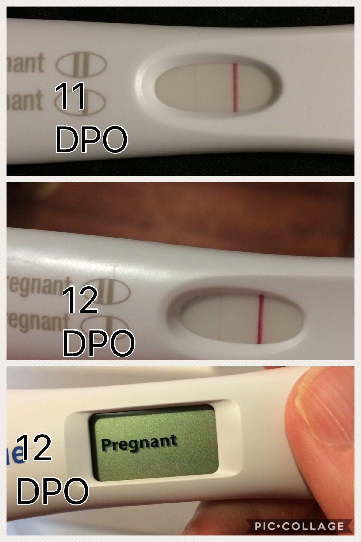 12 Dpo First Response Pregnancy Test - Pregnancy Symptoms