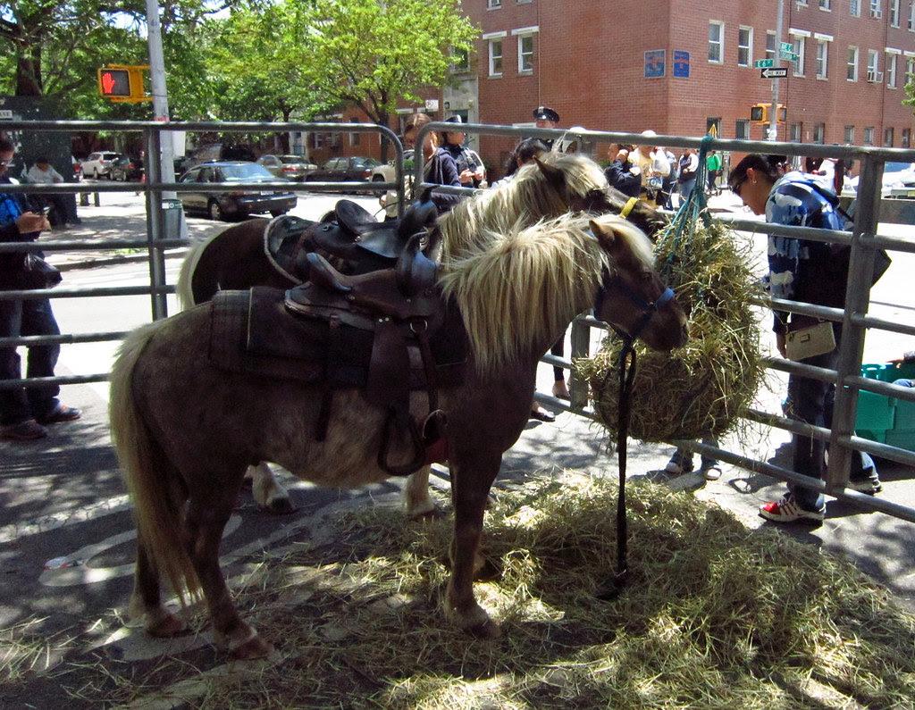 Loisaida Festival