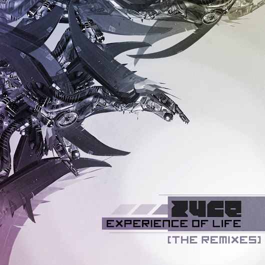 Zyce - Experience Of Life SAMPLE