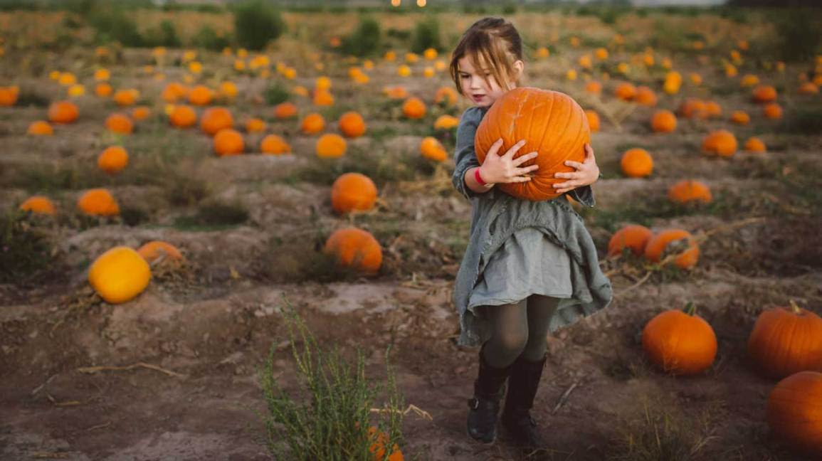9 impressive health benefits of pumpkin
