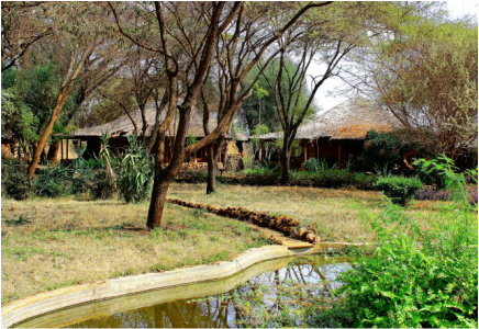 Amboseli Sopa Lodges Providing Exclusive Safari Experience amidst Unbelievable African Wilderness