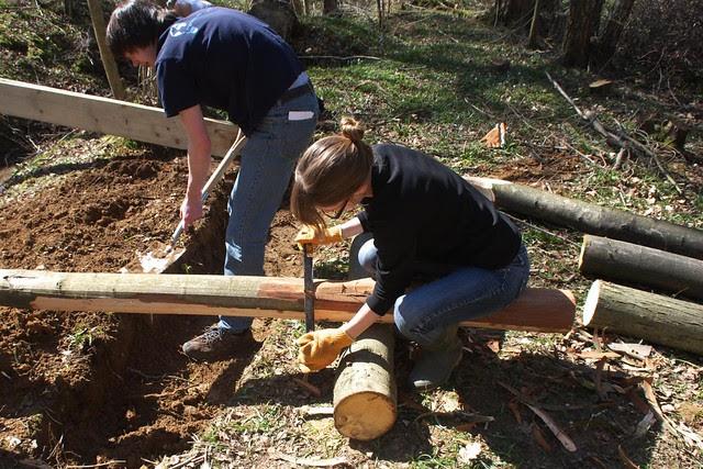 DSC_3708 Building a log bridge