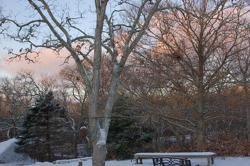 pink cloud sunrise.JPG