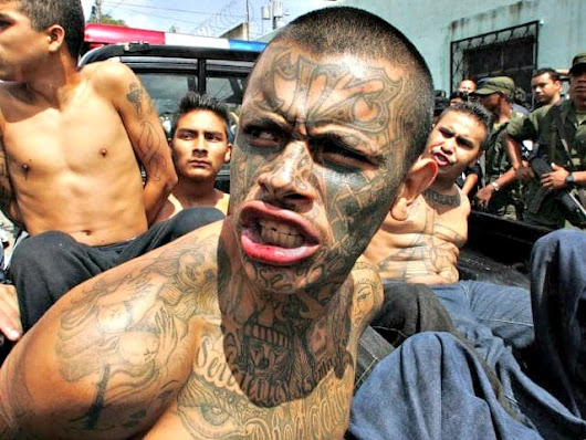 Dems, Media Outraged After Trump Calls MS-13 Gang Members 'Animals' | Breitbart