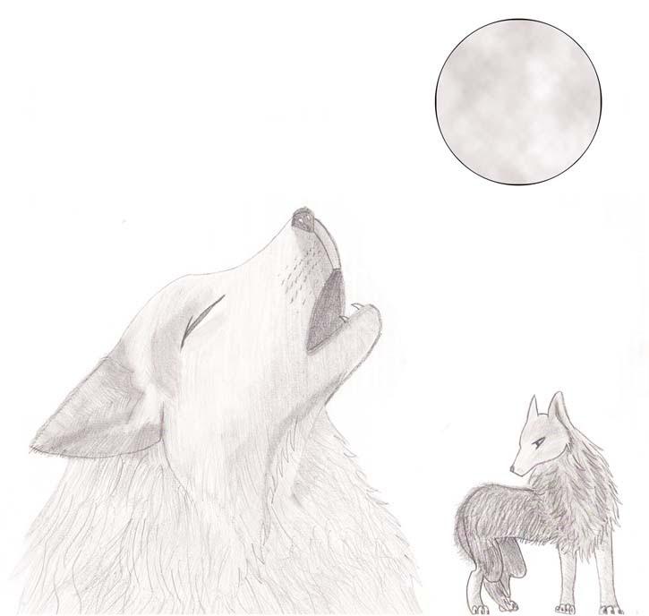 Luna Llena Dibujo Lapiz