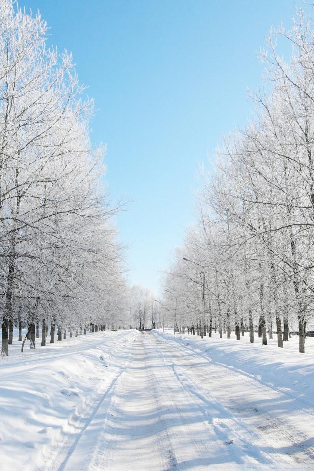 Road Covered With Snow 4K HD Desktop Wallpaper for 4K Ultra HD TV • Dual Monitor Desktops