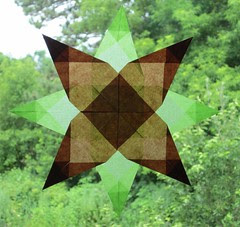 Light Green and Brown Star
