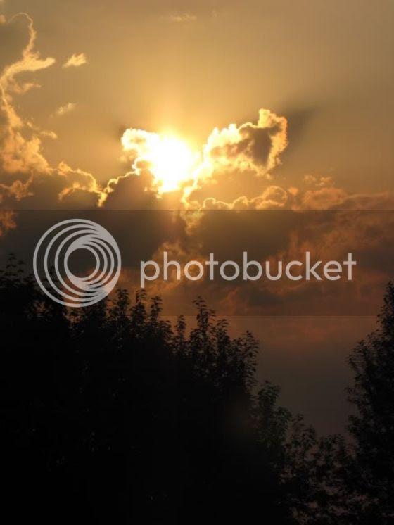photo IMG_3034.jpg