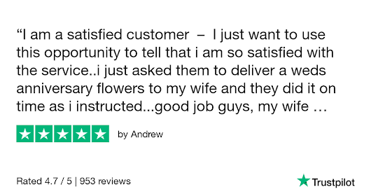 Andrew gave Online Flower Shop 5 stars. Check out the full review...